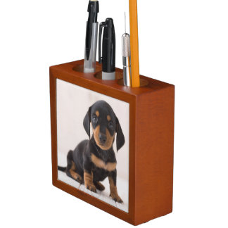 Miniature Dachshund Sitting Pencil/Pen Holder