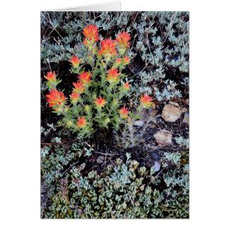 Miniature Garden at Gem Lake Greeting Card