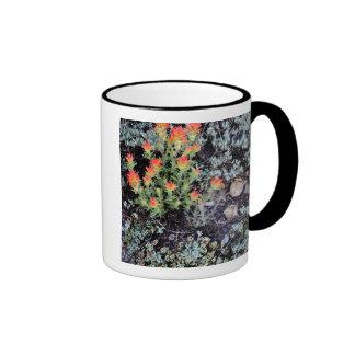 Miniature Garden at Gem Lake Ringer Coffee Mug