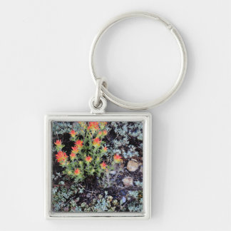 Miniature Garden at Gem Lake Silver-Colored Square Key Ring