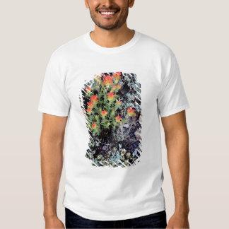 Miniature Garden at Gem Lake T-shirts