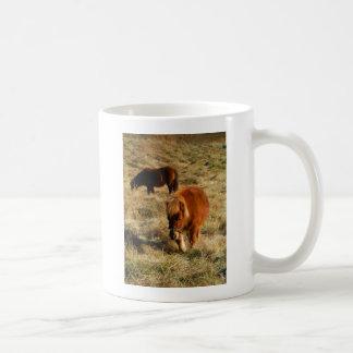 miniature Horse ponies Coffee Mug
