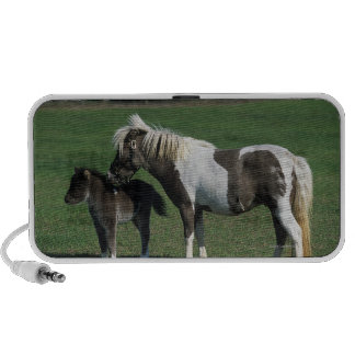 Miniature Mare & Foal Standing iPod Speakers