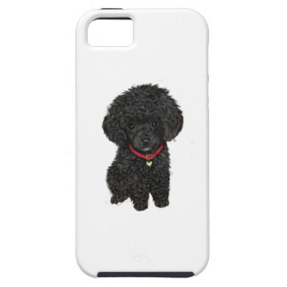 Miniature or Toy Poodle - Black 1 iPhone 5 Case