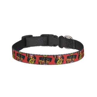 Miniature Pinscher Black Min Pin Small Dog Collar