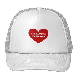 Miniature Pinscher Hat