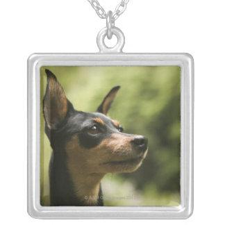 Miniature Pinscher (Min-Pin) 2 Custom Jewelry