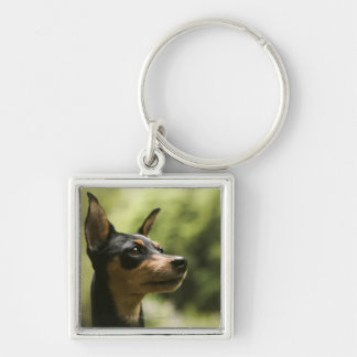 Miniature Pinscher (Min-Pin) 2 Silver-Colored Square Key Ring