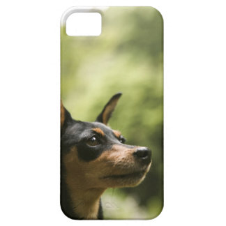 Miniature Pinscher (Min-Pin) Barely There iPhone 5 Case