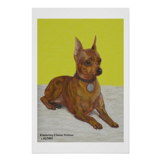 Miniature Pinscher Poster