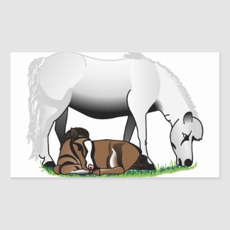 Miniature Ponies Rectangular Sticker