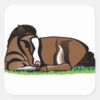 Miniature Pony Square Sticker
