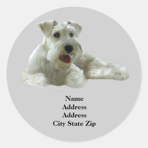 Miniature Schnauzer Address Label Round Stickers