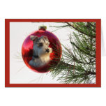 Miniature Schnauzer Christmas Card Ball Hanging