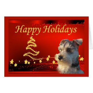 Miniature Schnauzer Christmas Card Stars