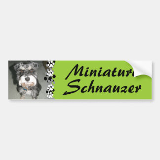 Miniature Schnauzer Photo Bumper Sticker