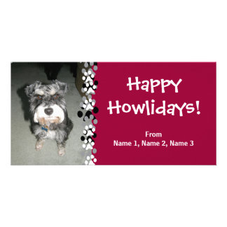 Miniature Schnauzer Photo Card
