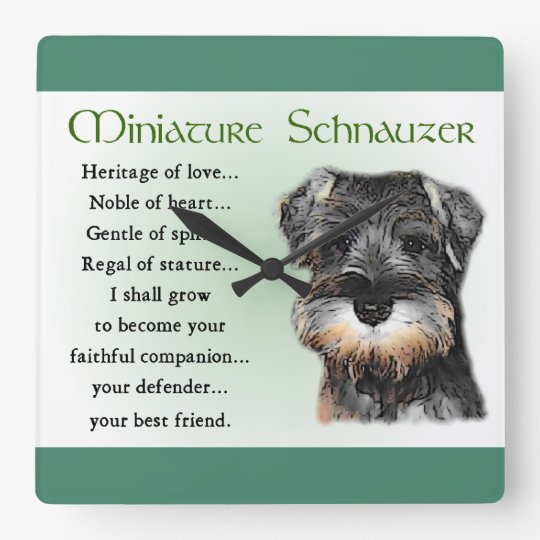 Miniature Schnauzer Puppy Heritage Gifts Square Wall Clock
