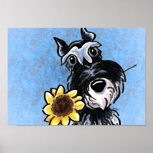 Miniature Schnauzer Sunflower Blue Off-Leash Art™ Posters