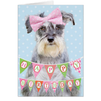 Miniature Schnauzer Wearing Pink Polka Dot Bow Greeting Card