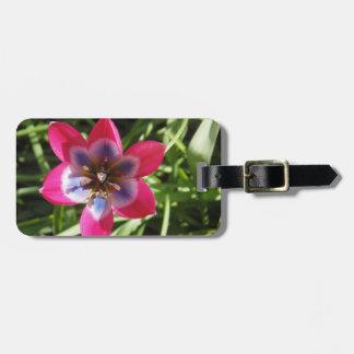 Miniature Tulip Luggage Tag
