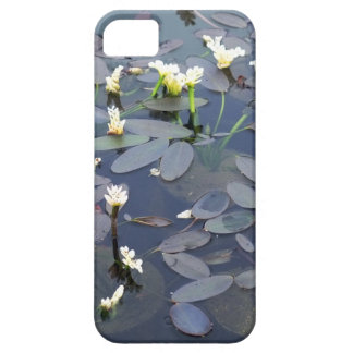 Miniature Water Lilies iPhone 5 Cover