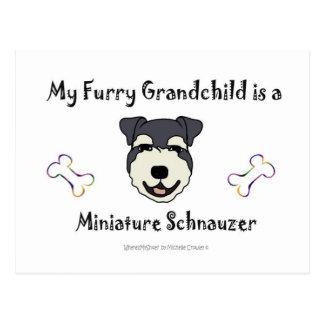 MiniatureSchnauzer Postcard