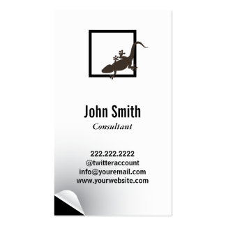 Minimal Chameleon Consulting Business Card