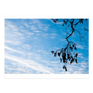 Minimalism photograph postcard