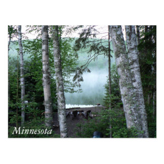 Minnesota at the Lake Postcard