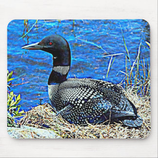 Minnesota Common Loon Mouse Mat