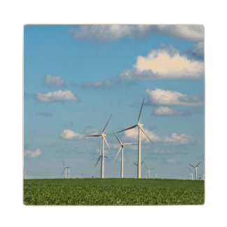 Minnesota, Dexter, Grand Meadow Wind Farm 2 Maple Wood Coaster