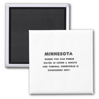 Minnesota Freeze Magnet