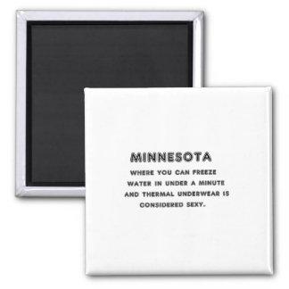Minnesota Freeze Square Magnet
