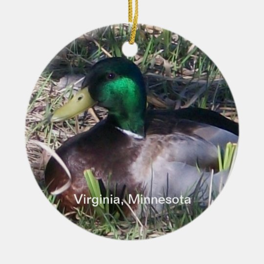 Minnesota Male Mallard Duck Ornament