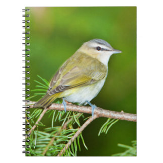 Minnesota, Mendota Heights 1 Notebooks