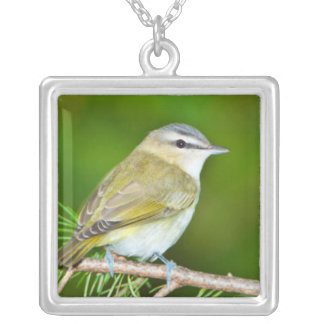Minnesota, Mendota Heights 1 Silver Plated Necklace