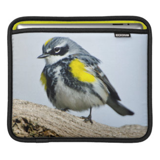 Minnesota, Mendota Heights 2 iPad Sleeve