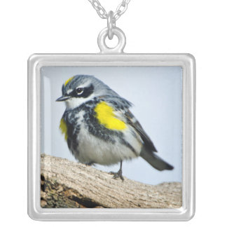 Minnesota, Mendota Heights 2 Silver Plated Necklace