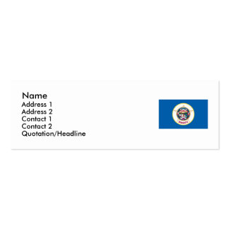 Minnesota State Flag Double-Sided Mini Business Cards (Pack Of 20)