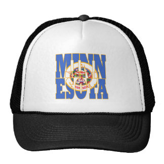 Minnesota state flag text cap