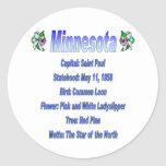 Minnesota State Info Sticker