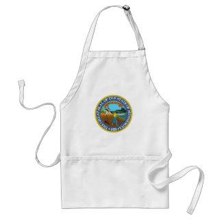 Minnesota state seal america republic symbol flag standard apron
