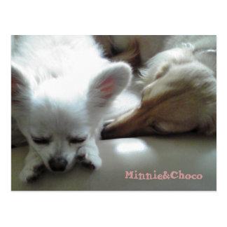 Minnie&Choco Postcard