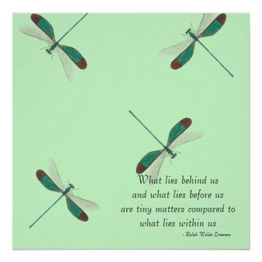 Mint Dragonflies What Lies Behind Us Poster