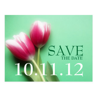 Mint Green and Fuchsia Save the Date Postcard