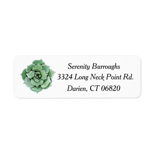 Mint Green Succulent Cactus Watercolor Floral