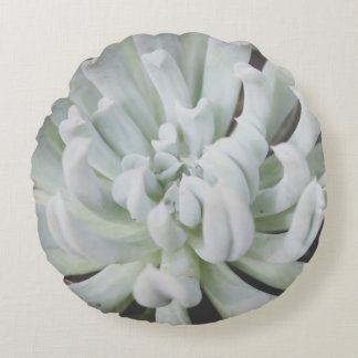 Mint Green Succulent Photo Round Cushion