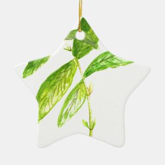 Mint herb Mint watercolour Mint print Ceramic Star Decoration