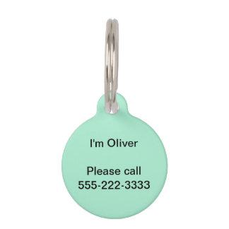 Mint Solid Color Pet ID Tag
